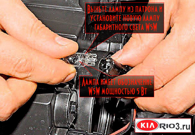 Лампы, применяемые вавтомобиле Kia Rio